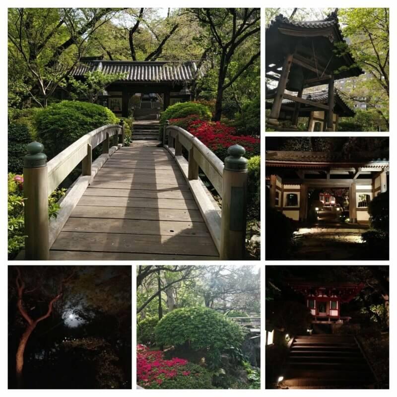 ホテル敷地内の外国人受け良さそうな日本庭園