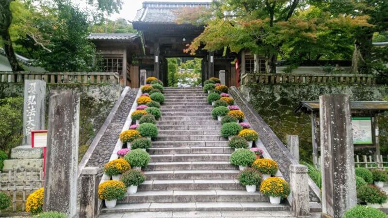 秋に色づき初めた修善寺の門